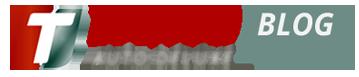 logo Taino Auto Deluxe.com
